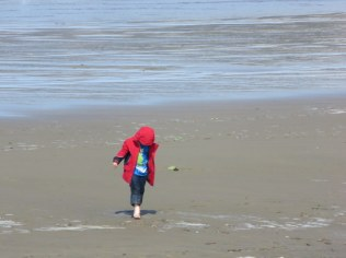 This little one was not deterred by cold sand.